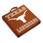 Texas Stadium Cushion