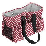 Arizona Cardinals DD Jr Caddy