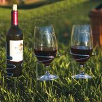 Wine Bottle and Glass Handy Holder Combo by Picnic Plus