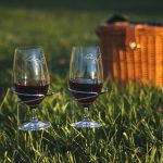 Set of 2 Wine Glass Handy Holders by Picnic Plus