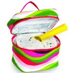 Ice Cream Carrier by Picnic Plus
