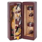 Harmony Insulated Wine Case for 2 by Picnic Time